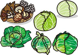 野菜5のイラスト素材 [FYI03137885]