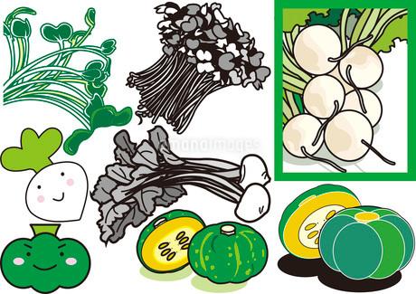 野菜3のイラスト素材 [FYI03137887]