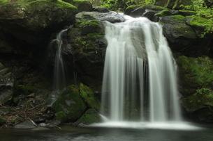 創造の滝 県民の森の滝の写真素材 [FYI03137910]