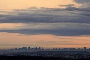 遠望 朝焼けの中の東京スカイツリーの写真素材 [FYI03137973]