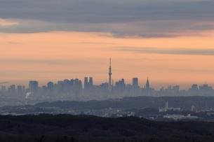 遠望 朝焼けの中の東京スカイツリーの写真素材 [FYI03137977]