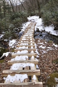 笠取山 雪の源流のみちの木道の写真素材 [FYI03138244]