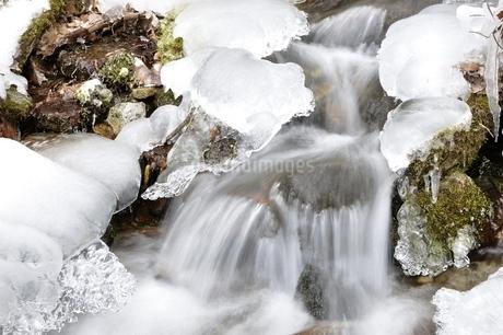 一ノ瀬川 水源の凍結の写真素材 [FYI03138248]