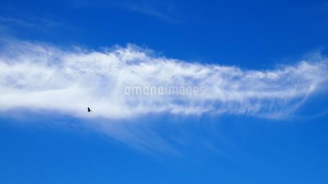 雲を飛ぶの写真素材 [FYI03138525]