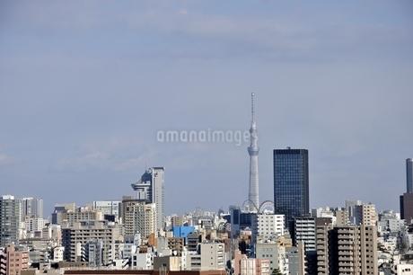 東京スカイツリーと高層ビルの写真素材 [FYI03139043]