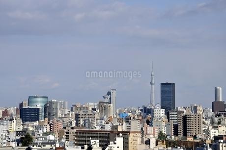 東京スカイツリーと高層ビルの写真素材 [FYI03139045]