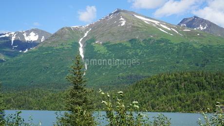 アラスカ Seward アメリカ 6の写真素材 [FYI03139234]