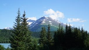 アラスカ Seward アメリカ 5の写真素材 [FYI03139235]