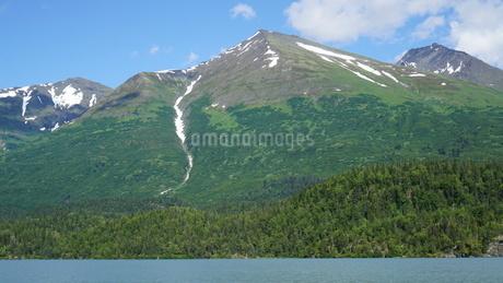 アラスカ Seward アメリカ 3の写真素材 [FYI03139237]