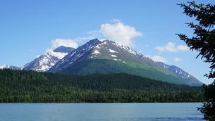 アラスカ Seward アメリカ 2の写真素材 [FYI03139238]
