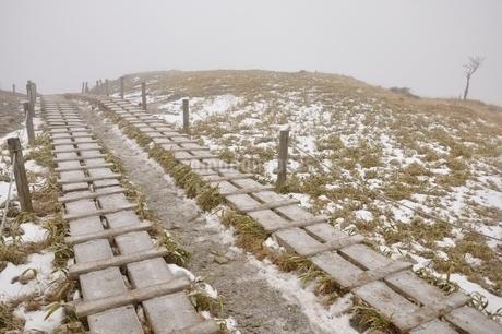 霧の登山道の写真素材 [FYI03139248]