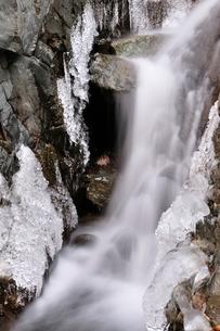 丹沢 ミズヒ大滝の写真素材 [FYI03139312]
