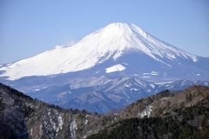 鍋割山から雪化粧の富士山の写真素材 [FYI03139317]