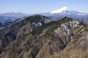 鍋割山からの富士山眺望の写真素材 [FYI03139325]