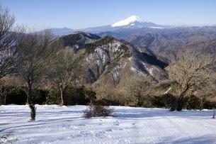 雪陵の鍋割山より雪富士の写真素材 [FYI03139334]