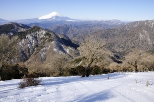 雪化粧の丹沢山地からの富士山の写真素材 [FYI03139335]