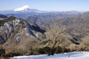 雪陵の山並みと雪富士の写真素材 [FYI03139336]
