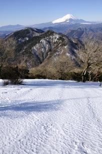 雪の鍋割山より富士山の写真素材 [FYI03139343]