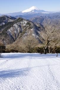 雪の鍋割山より富士山の写真素材 [FYI03139344]