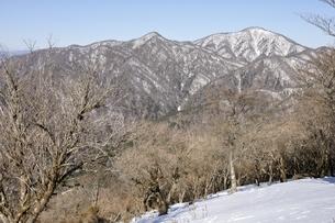 鍋割山より雪陵の檜洞丸の写真素材 [FYI03139347]