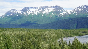 アラスカ Seward アメリカ 7の写真素材 [FYI03139359]