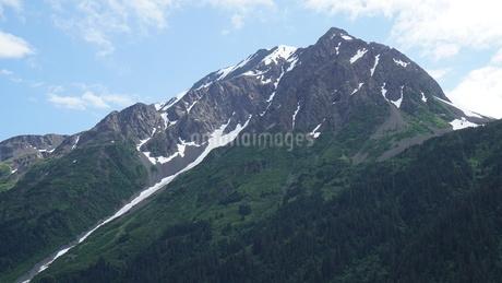 アラスカ Seward アメリカ 11の写真素材 [FYI03139370]