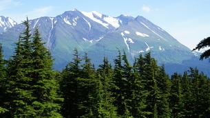 アラスカ Seward アメリカ 20の写真素材 [FYI03139384]