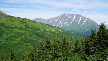 アラスカ Seward アメリカ 18の写真素材 [FYI03139386]