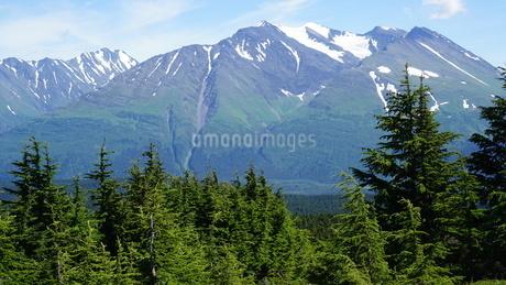 アラスカ Seward アメリカ 16の写真素材 [FYI03139390]