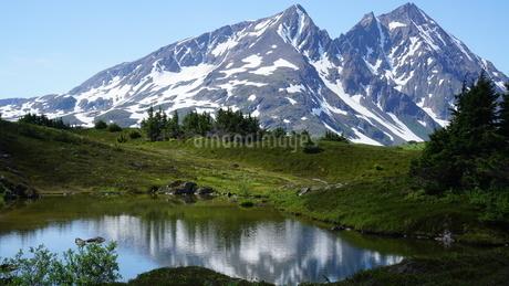 鏡の湖と雪山 アラスカ Seward アメリカ 23の写真素材 [FYI03139396]