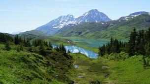 アラスカ Seward アメリカ 21の写真素材 [FYI03139398]
