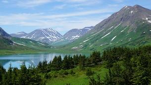 アラスカ Seward アメリカ 30の写真素材 [FYI03139401]