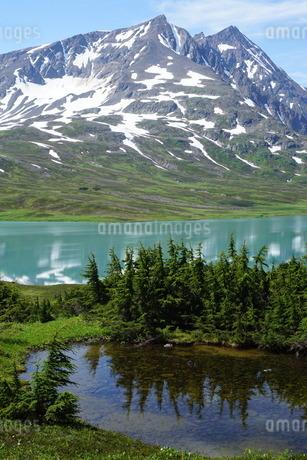 アラスカ Seward アメリカ 29の写真素材 [FYI03139403]