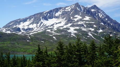 アラスカ Seward アメリカ 27の写真素材 [FYI03139406]