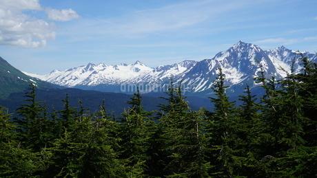アラスカ Seward アメリカ 26の写真素材 [FYI03139407]