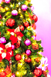 クリスマスツリーの写真素材 [FYI03139607]