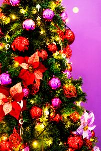 クリスマスツリーの写真素材 [FYI03139608]