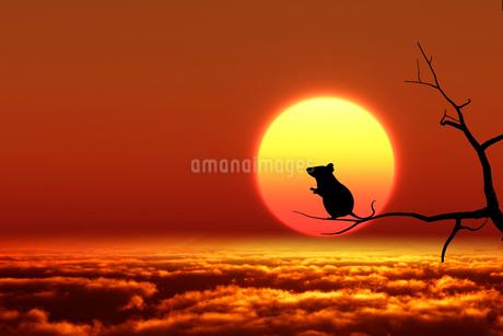 日の出とネズミのシルエットのイラスト素材 [FYI03139610]