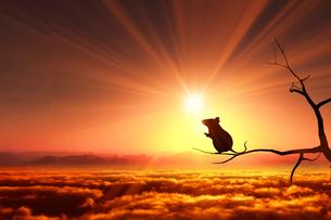 日の出とネズミのシルエットの写真素材 [FYI03139612]