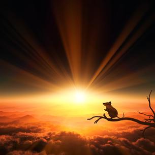 日の出とネズミのシルエットのイラスト素材 [FYI03139614]
