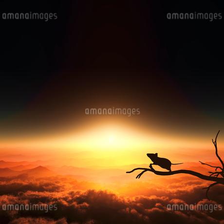 日の出とネズミのシルエットのイラスト素材 [FYI03139615]