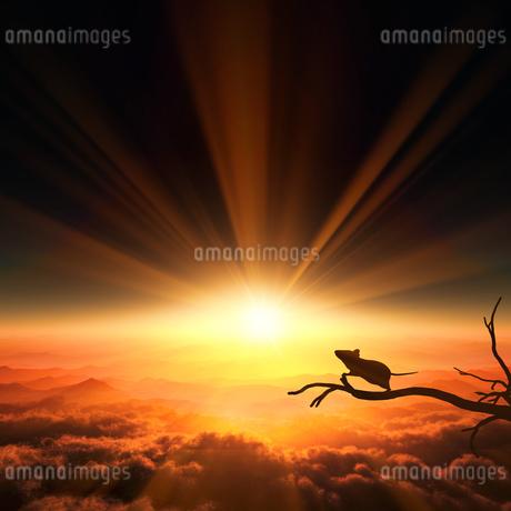 日の出とネズミのシルエットのイラスト素材 [FYI03139616]