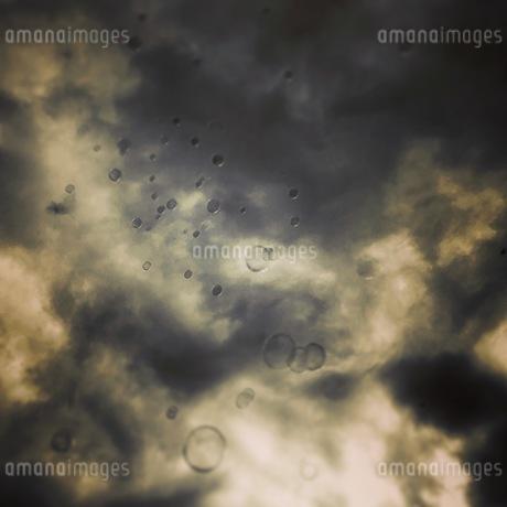 空へのぼる泡の写真素材 [FYI03139617]