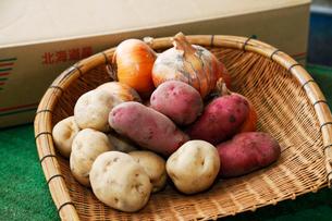 野菜の写真素材 [FYI03139626]