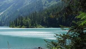 アラスカ Seward アメリカ 50の写真素材 [FYI03139856]