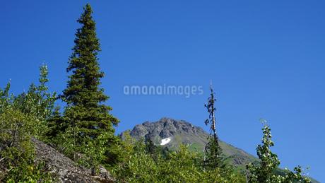 アラスカ Seward アメリカ 49の写真素材 [FYI03139857]