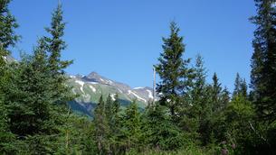 アラスカ Seward アメリカ 54の写真素材 [FYI03139878]