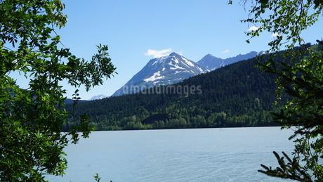アラスカ Seward アメリカ 61の写真素材 [FYI03139884]