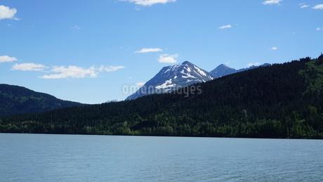 アラスカ Seward アメリカ 59の写真素材 [FYI03139886]