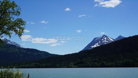アラスカ Seward アメリカ 57の写真素材 [FYI03139888]